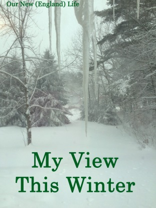 My View This Winter