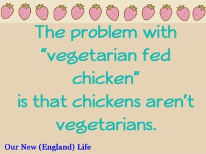 chickens aren't vegetarians